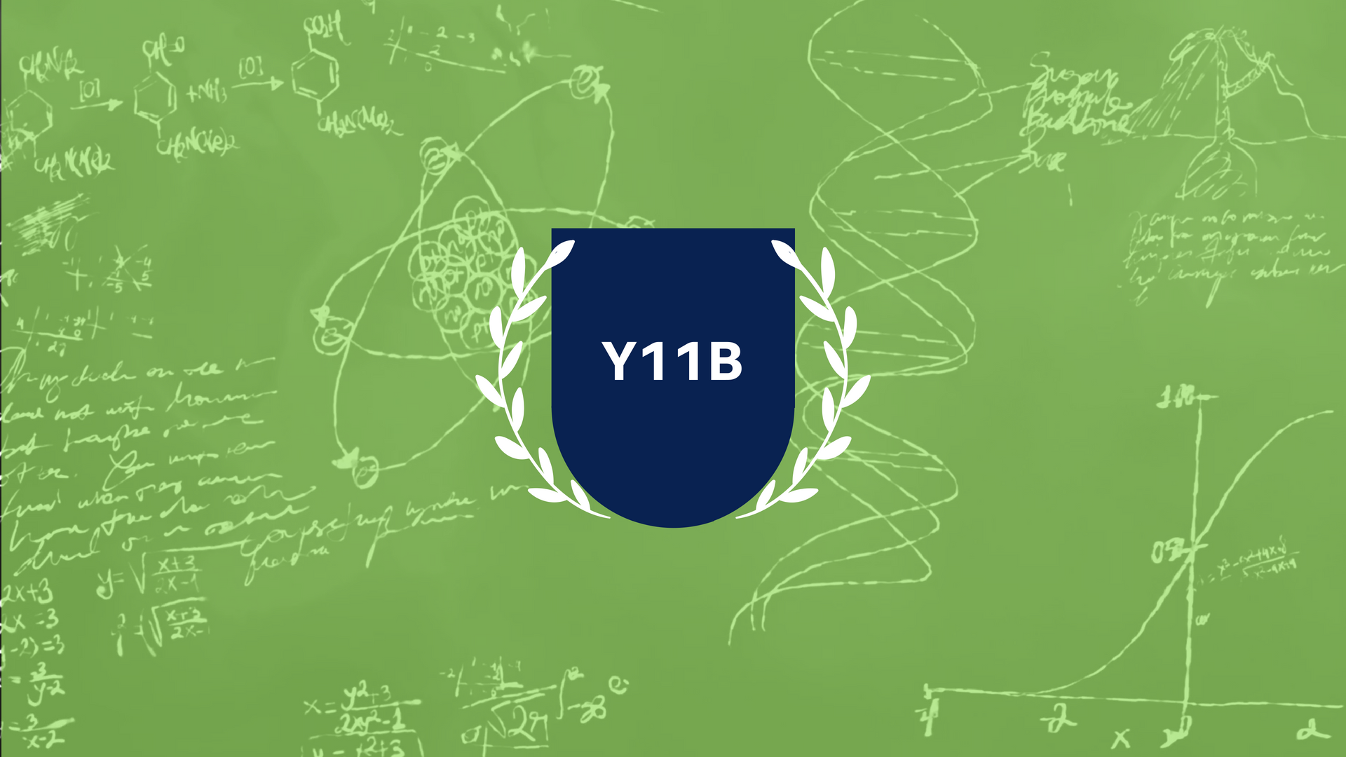 Y11B_banner