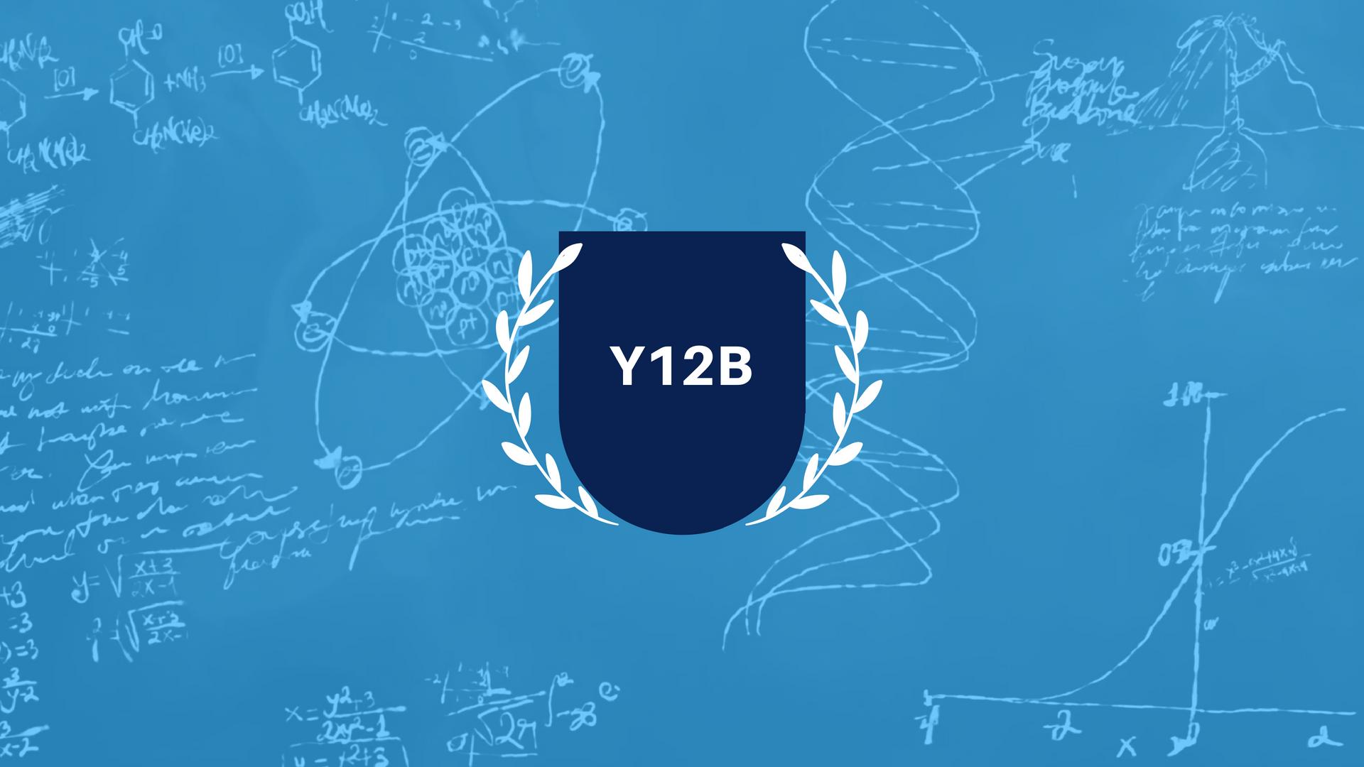 Y12B_banner